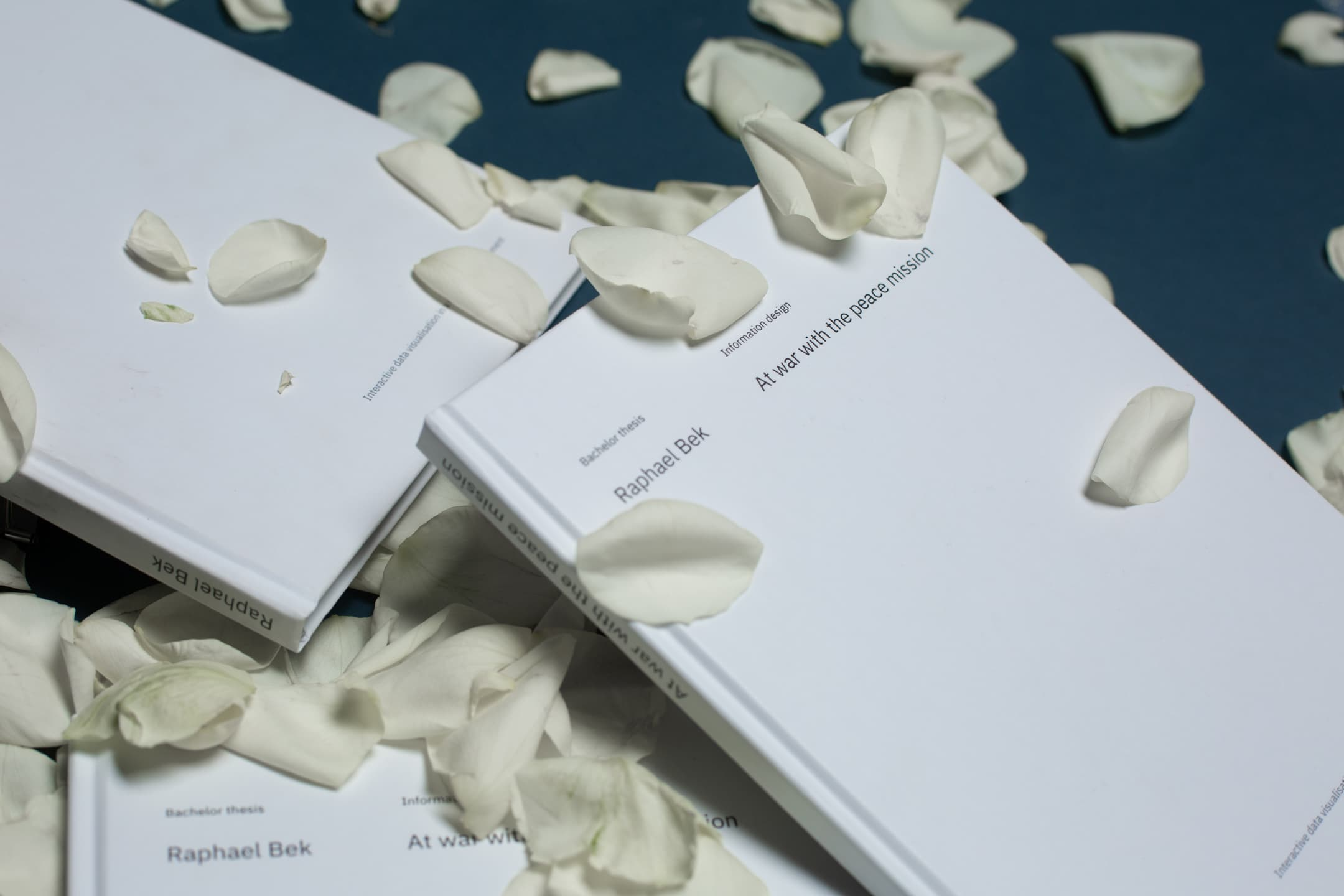 The thesis with aminimalistic cover, laid on white rose petals